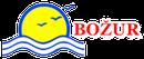 Bozur