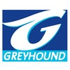 Greyhound Mega Coach
