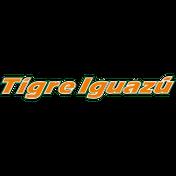 Tigre Iguazú